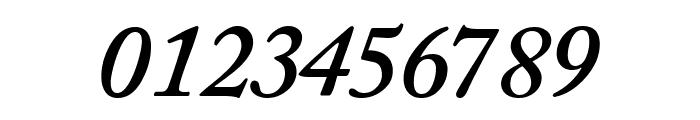CaslonSSK SemiBoldItalic Font OTHER CHARS