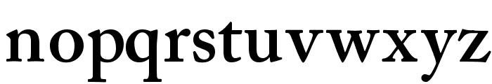 CaslonSSK SemiBold Font LOWERCASE