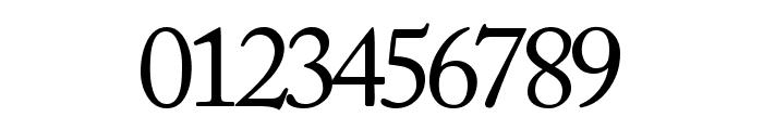 CaslonSSK Font OTHER CHARS
