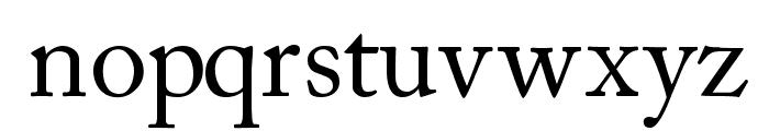 CaslonSSK Font LOWERCASE