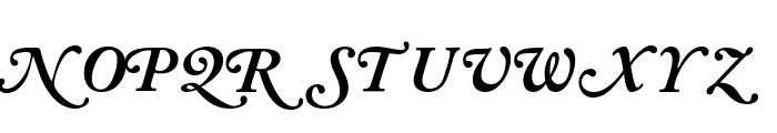 CaslonSwashBlackSCapsSSK Italic Font UPPERCASE