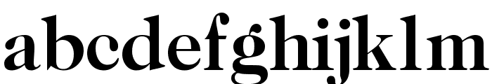 CaslonTwoSSK Bold Font LOWERCASE