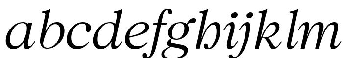 CaslonUT LightItalic Font LOWERCASE