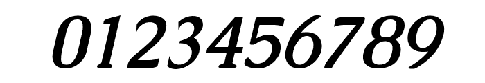 Caudex Bold Italic Font OTHER CHARS