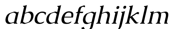 Caudex Italic Font LOWERCASE