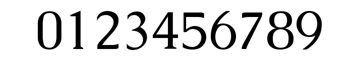 Caudex Font OTHER CHARS