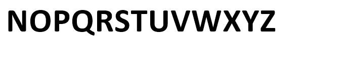Calibri Bold Font UPPERCASE