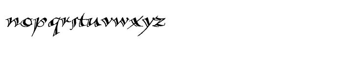 Calligraphica LX Italic Font LOWERCASE
