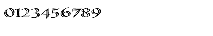Calligraphica Regular LX Font OTHER CHARS