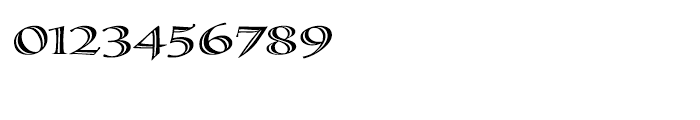 Calligraphica Regular SX Font OTHER CHARS