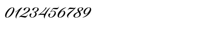 Candlescript Pro Regular Font OTHER CHARS