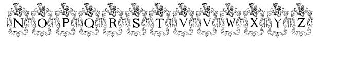 Capitular Heraldica Regular Font LOWERCASE