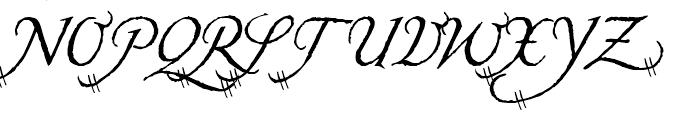 Carmilla Swash Font UPPERCASE