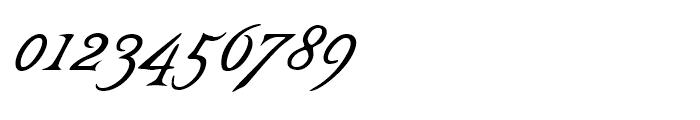 Castine Italic Font OTHER CHARS