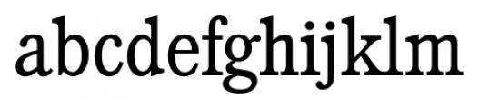 Calgary Serial Light Font LOWERCASE