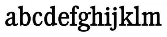 Calgary Serial Regular Font LOWERCASE