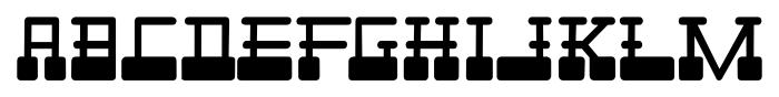 Cardholder Dispute SRF Regular Font UPPERCASE