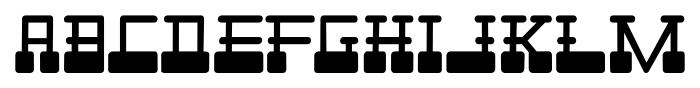 Cardholder Dispute SRF Regular Font LOWERCASE