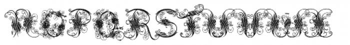 Cadels3 Font UPPERCASE