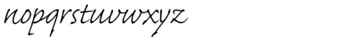 Caflisch Script Pro Light Font LOWERCASE