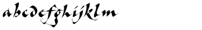 Cal Bakerly Font LOWERCASE