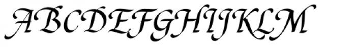 Cal Humanistic Cursive Font UPPERCASE