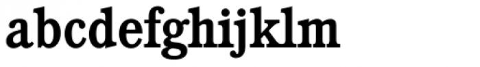 Calgary Serial Medium Font LOWERCASE