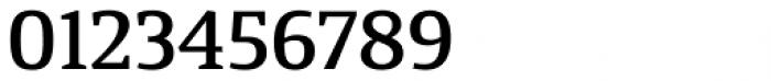 Calicanto Medium Font OTHER CHARS