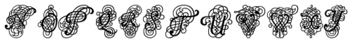 Calligraphia Latina Dense Font UPPERCASE