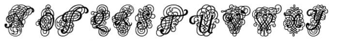 Calligraphia Latina Dense Font LOWERCASE