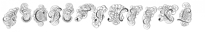 Calligraphia Latina Versals Two Font LOWERCASE