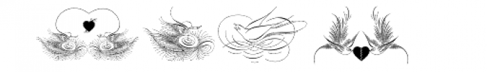 Calligraphic Birds Two Font UPPERCASE