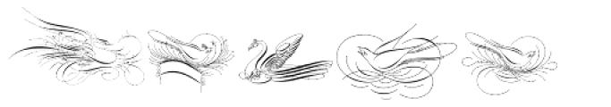 Calligraphic Birds Font LOWERCASE