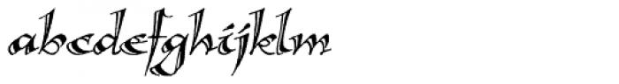 Calligraphica Italic Font LOWERCASE