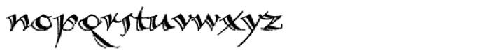 Calligraphica Lx Regular Font LOWERCASE