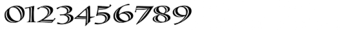 Calligraphica Sx Regular Font OTHER CHARS