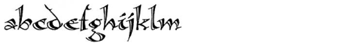 Calligraphica Font LOWERCASE