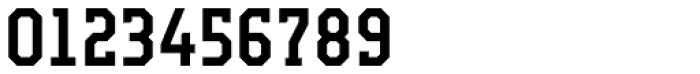 Campione Neue Serif Medium Font OTHER CHARS