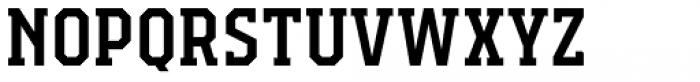 Campione Neue Serif Medium Font LOWERCASE