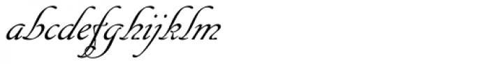 Cancellaresca Script Font LOWERCASE