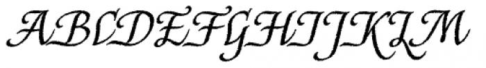 Capellina Rough Font UPPERCASE