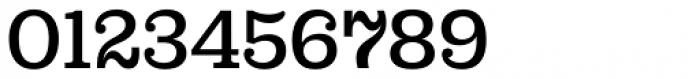 Capital Serif Medium Font OTHER CHARS