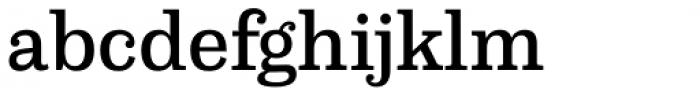 Capital Serif Medium Font LOWERCASE