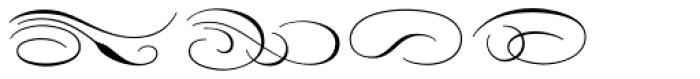 Carioca Script Flourishes Font OTHER CHARS