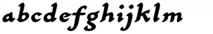 Carlin Script Bold Italic Font LOWERCASE
