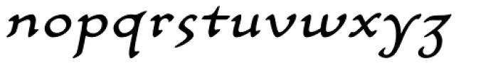 Carlin Script Italic Font LOWERCASE