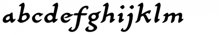 Carlin Script Medium Italic Font LOWERCASE