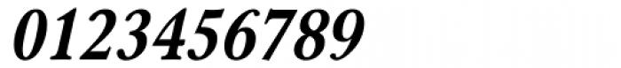 Carniola Bold Italic Font OTHER CHARS