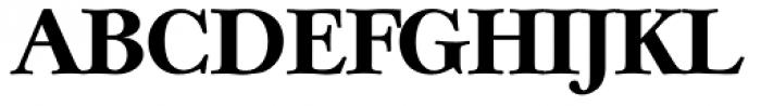 Casablanca Serial ExtraBold Font UPPERCASE