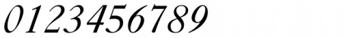 Caslon FiveForty Italic Font OTHER CHARS